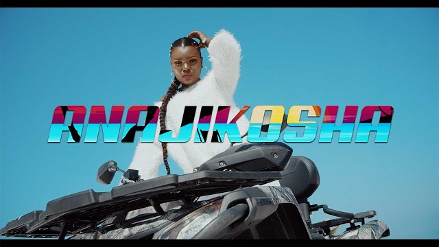 Harmonize – Anajikosha (OFFICIAL VIDEO)