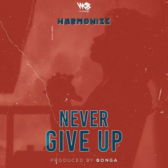 Harmonize – Never Give Up