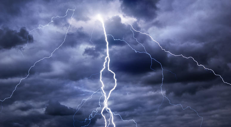 OMG!! Lightning Strike Kills 15 Head Of Cattle In Ekiti